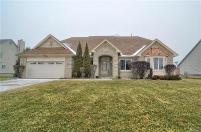 Farmington Hill Single Family Home For Sale: 27446 Cranbrook Dr