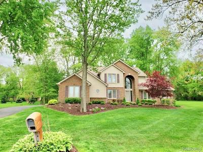 South Lyon Single Family Home For Sale: 57673 Hidden Timbers Dr