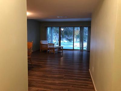 Ann Arbor Condo/Townhouse For Sale: 684 Peninsula Ct