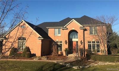 Northville Single Family Home For Sale: 48210 Binghampton Crt