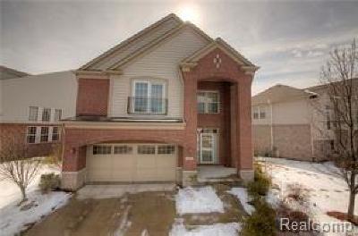 Novi Single Family Home For Sale: 44919 Paine Dr