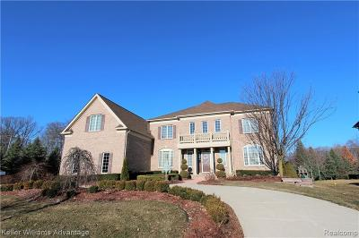 Novi Single Family Home For Sale: 50861 Chesapeake Dr