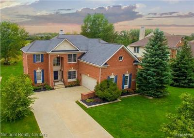 Northville Single Family Home For Sale: 15381 Bay Hill Dr
