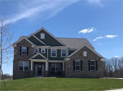 Lake Orion Single Family Home For Sale: 3478 Kingsdale Blvd