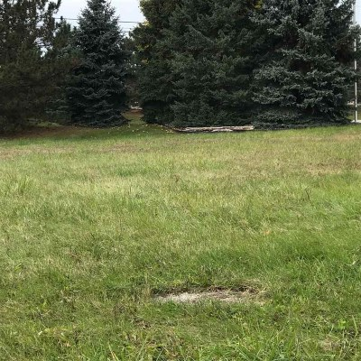 Residential Lots & Land For Sale: 41895 Dorchester