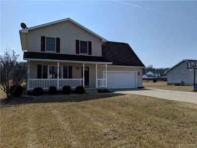 Lenawee County Single Family Home For Sale: 2003 Friar Tuck Cir