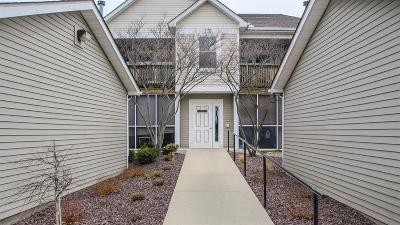 Ann Arbor Condo/Townhouse For Sale: 1614 Oakfield