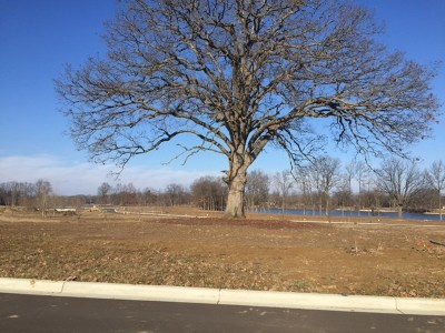 Residential Lots & Land Contingent - Financing: 756 Eagle View Way