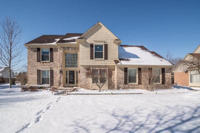 Canton Single Family Home For Sale: 46808 Glengarry Blvd