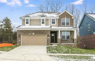 Novi Single Family Home For Sale: 28106 Hummingdale Cir