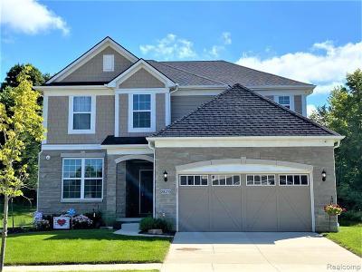 Novi Single Family Home For Sale: 28049 Hummingdale Cir