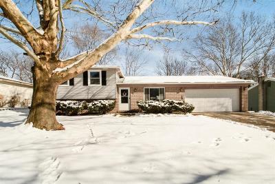 Ann Arbor Single Family Home For Sale: 2761 Deake Ave