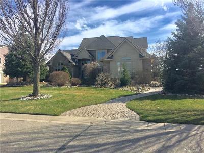 South Lyon Single Family Home For Sale: 23637 Spy Glass Hl N