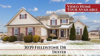 Dexter Single Family Home For Sale: 3039 Fieldstone Dr