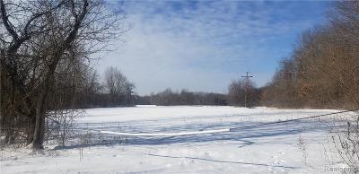 South Lyon MI Residential Lots & Land For Sale: $240,000