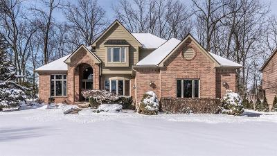 Ann Arbor Single Family Home For Sale: 3938 Deerglen Dr