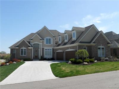 South Lyon Single Family Home For Sale: 12 Mile Rd