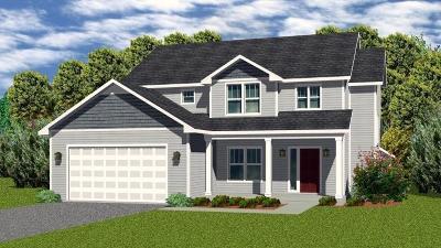 Ann Arbor Single Family Home For Sale: 2502 Banyan Ct