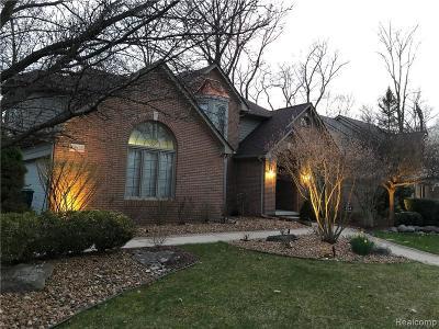Novi Single Family Home For Sale: 29925 Lilley Trl