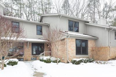 Ann Arbor Condo/Townhouse For Sale: 2204 Pine Grove Ct