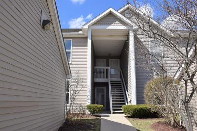 Ann Arbor Condo/Townhouse For Sale: 1732 Weatherstone Dr