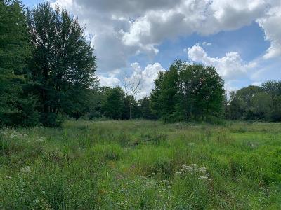 Ypsilanti MI Residential Lots & Land For Sale: $85,000