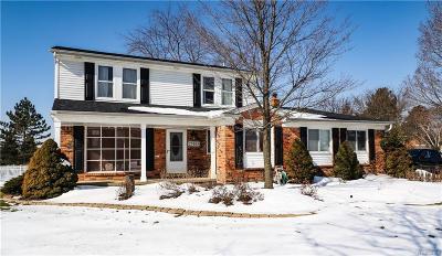 Novi Single Family Home For Sale: 23665 Hickory Grove Ln