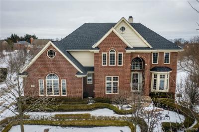 Northville Single Family Home For Sale: 16513 Brooklane Blvd