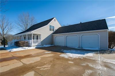 South Lyon Single Family Home For Sale: 8625 Valley View Dr