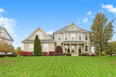 Brighton Single Family Home For Sale: 9452 Wendover Crt
