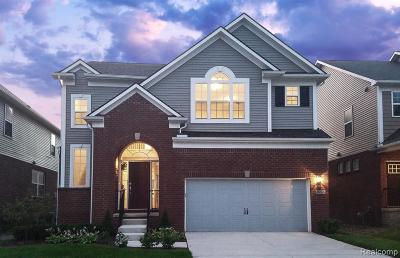 Novi Single Family Home For Sale: 28376 Hanover Dr
