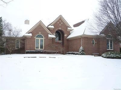 Canton Single Family Home For Sale: 48190 Inveraray Rd