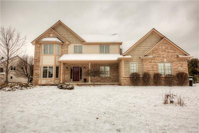 Brighton Single Family Home For Sale: 9667 Winding Pines Dr