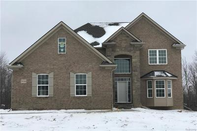 South Lyon Single Family Home For Sale: 59388 Deer Haven Dr