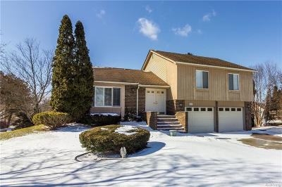 Lake Orion Single Family Home For Sale: 2563 Armstrong Dr