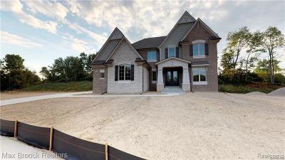 Novi Single Family Home For Sale: 22435 Montebello Crt