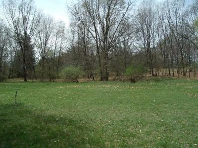 Manchester MI Residential Lots & Land For Sale: $159,000
