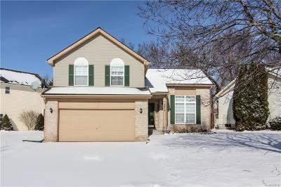 Lake Orion Single Family Home For Sale: 3072 Talon Cir