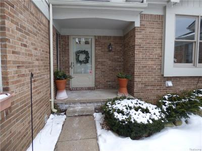 Milford Condo/Townhouse For Sale: 804 Ridgeside Dr