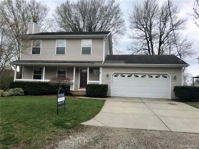 Lake Orion Single Family Home For Sale: 3399 Hill Rd