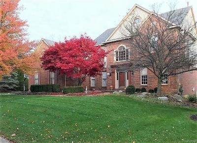 Novi Single Family Home For Sale: 47274 Sunnybrook Ln