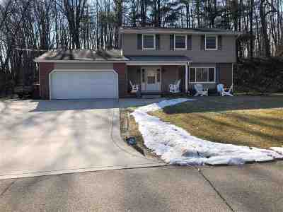 Lenawee County Single Family Home For Sale: 4515 Southgate