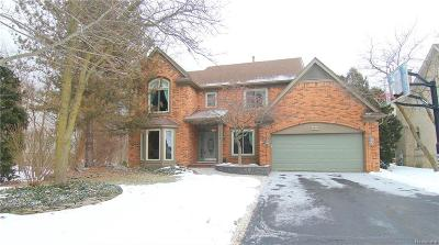 West Bloomfield Single Family Home For Sale: 6082 Mission Dr