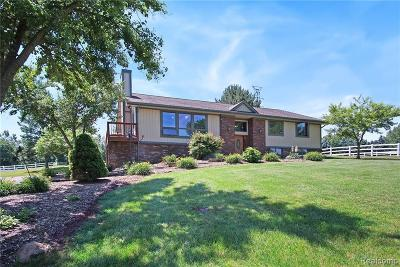 Northville Single Family Home For Sale: 7278 Six Mile Rd