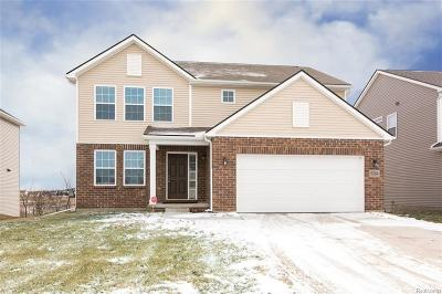 Washtenaw County Single Family Home For Sale: 9284 Country View Dr