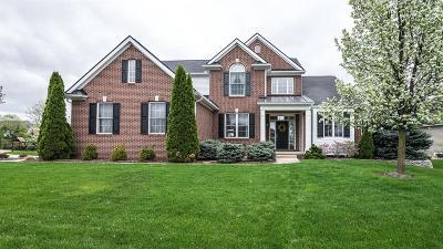 Ann Arbor Single Family Home For Sale: 6327 Edgewood Dr