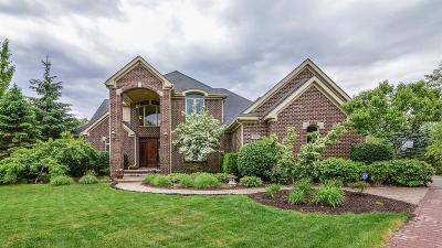 Ann Arbor Single Family Home For Sale: 3991 Calgary Ct