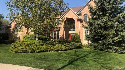 Novi Single Family Home For Sale: 23349 Argyle St