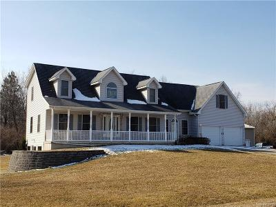 Belleville Single Family Home For Sale: 8533 Meadow Springs Ln