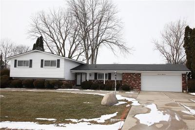 West Bloomfield Single Family Home For Sale: 6684 Cottonwood Knoll